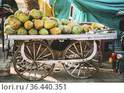 Goa, India. Many Coconuts Piled On Cart For Sale In Grocery Market. Стоковое фото, фотограф Ryhor Bruyeu / easy Fotostock / Фотобанк Лори