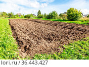 Freshly plowed agricultural field at the countryside in sunny summer... Стоковое фото, фотограф Zoonar.com/Alexander Blinov / easy Fotostock / Фотобанк Лори