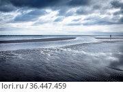 Sandstrand auf der Insel Rügen im Winter. Стоковое фото, фотограф Zoonar.com/Harald Biebel / easy Fotostock / Фотобанк Лори