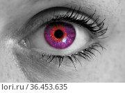 Auge mit lila iris blickt auf betrachter konzept makro. Стоковое фото, фотограф Zoonar.com/WSF / easy Fotostock / Фотобанк Лори