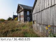 Деревня Ташкеницы (Ташкиница). Республика Карелия (2020 год). Стоковое фото, фотограф Дмитрий Шишков / Фотобанк Лори