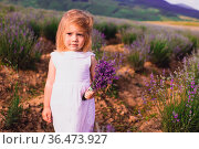 The serious little blonde girl with a bunch of lavender stands among... Стоковое фото, фотограф Zoonar.com/OKSANA SHUFRYCH / easy Fotostock / Фотобанк Лори