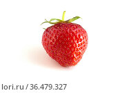 Isolated strawberries on a white background. Saw a delicious berry. Стоковое фото, фотограф Zoonar.com/Nikolay Malshakov / easy Fotostock / Фотобанк Лори