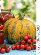 Homemade tomato and a pumpkin vegetable juice. Стоковое фото, фотограф Володина Ольга / Фотобанк Лори