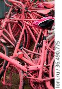 Fahrräder, fahrrad, rad, räder, rosa, pink, sattel, sättel, parken... Стоковое фото, фотограф Zoonar.com/Volker Rauch / easy Fotostock / Фотобанк Лори