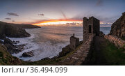 The Crowns Engine houses at Botallack looking toward sunset, near St Just, West Cornwall, UK. November 2020. Стоковое фото, фотограф Ross Hoddinott / Nature Picture Library / Фотобанк Лори
