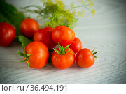 natural tomatoes with spices prepared for conservation. Стоковое фото, фотограф Peredniankina / Фотобанк Лори