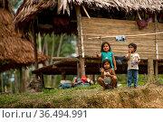 Children standing outside traditional house, Maijuna Indigenous Community, Rainforest, Sucusari, Rio Napo, Loreto, Peru. January 2013. Стоковое фото, фотограф Mark Bowler / Nature Picture Library / Фотобанк Лори