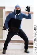 Man burglar stealing tv set from house. Стоковое фото, фотограф Elnur / Фотобанк Лори