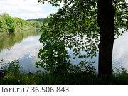 Dreifelder Weiher , Westerwald, weiher , see, teich, landschaft, gewässer... Стоковое фото, фотограф Zoonar.com/Volker Rauch / easy Fotostock / Фотобанк Лори
