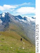 Hohe mut, wanderer, bergwanderer,rotmoostal, seelenkogel, , Berge... Стоковое фото, фотограф Zoonar.com/Volker Rauch / easy Fotostock / Фотобанк Лори