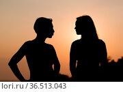Silhouette of the two womans standing during beautiful sunset. Стоковое фото, фотограф Zoonar.com/Jiri Plistil / easy Fotostock / Фотобанк Лори
