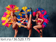 Three Women in cabaret costume with colorful feathers plumage. Стоковое фото, фотограф Zoonar.com/Max / easy Fotostock / Фотобанк Лори