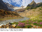 Caucasus mountains. Стоковое фото, фотограф александр жарников / Фотобанк Лори