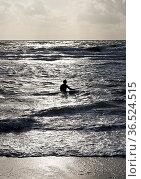 Wellenreiterin geht mit ihrem Surfbrett in die Nordsee, Westkueste... Стоковое фото, фотограф Zoonar.com/Stefan Ziese / age Fotostock / Фотобанк Лори