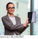 Woman working with tablet in office. Стоковое фото, фотограф Elnur / Фотобанк Лори
