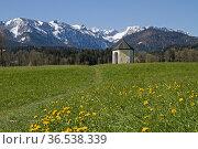 Kleine Wiesenkapelle vor der Gebirgsgruppe der Benediktenwand. Стоковое фото, фотограф Zoonar.com/Eder Christa / easy Fotostock / Фотобанк Лори