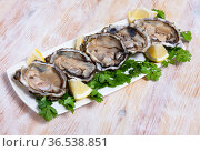 Seafood appetizer fresh oysters with lemon and parsley on white plate. Стоковое фото, фотограф Яков Филимонов / Фотобанк Лори