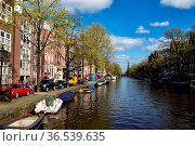 Blick über die Prinsengracht auf die Westerkerk in Amsterdam, Niederlande... Стоковое фото, фотограф Zoonar.com/Dirk Rueter / age Fotostock / Фотобанк Лори
