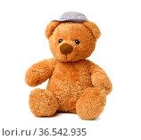 Brown teddy bear in a felt hat sits on a white isolated background... Стоковое фото, фотограф Zoonar.com/DANK0 NN / easy Fotostock / Фотобанк Лори
