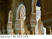 Detail columns in the Chamber the Lions , The Royal House, the Alhambra... Стоковое фото, фотограф Frederic Soreau / age Fotostock / Фотобанк Лори