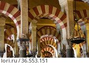 Cordoba Spain Great Mosque, Mezquita de Cordoba interior,Andalusia... Стоковое фото, фотограф Frederic Soreau / age Fotostock / Фотобанк Лори