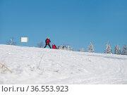 Schlittenhundesport - Deutsche Meisterschaft Frauenwald 2015. Стоковое фото, фотограф Zoonar.com/H.Eschrich / age Fotostock / Фотобанк Лори