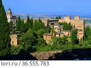 Alhambra Palace, Granada, Andalusia,Spain. Стоковое фото, фотограф Frederic Soreau / age Fotostock / Фотобанк Лори