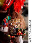 Italienisches Zugpferd mit prachtvoller Kutsche. Стоковое фото, фотограф Zoonar.com/Martina Berg / easy Fotostock / Фотобанк Лори