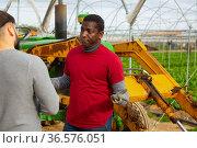 Worried African American farmer discussing with partner. Стоковое фото, фотограф Яков Филимонов / Фотобанк Лори