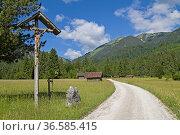 Beim Aufstieg zur Enningalm in den Ammergauer Alpen kommt der Wanderer... Стоковое фото, фотограф Zoonar.com/Eder Christa / easy Fotostock / Фотобанк Лори