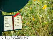 Selbstbedienungsfeld. Стоковое фото, фотограф Zoonar.com/Martina Berg / easy Fotostock / Фотобанк Лори