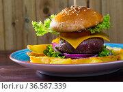 Heeseburger with beef, tomato, cheese, cucumber and french fries. Стоковое фото, фотограф Яков Филимонов / Фотобанк Лори