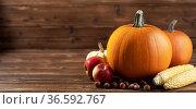 Autumn harvest still life with pumpkins. Стоковое фото, фотограф Иван Михайлов / Фотобанк Лори