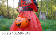 Halloween girl in witch costume eats collected candies. Trick-or-treating. Guising. Jack-o-lantern. Child in carnival outdoors. Celebrate halloween Girl in forest smiling and holding basket of sweets. Стоковое видео, видеограф Ирина Ткачук / Фотобанк Лори