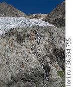 Glacier Blanc, Ecrins, Hautes Alpes, France, August 2020. Стоковое фото, фотограф Pascal  Tordeux / Nature Picture Library / Фотобанк Лори