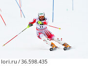 Manfred Pranger, …sterrreich, Fis Slalom der Herren, Gudiberg, Gamisch... Стоковое фото, фотограф Zoonar.com/GUENTER LENZ / age Fotostock / Фотобанк Лори