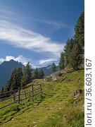 Wanderweg in den Ötztaler Alpen hoch über Längenfeld. Стоковое фото, фотограф Zoonar.com/Eder Christa / age Fotostock / Фотобанк Лори