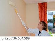 Wand,wandfarbe, ansrtreichen, farbe, rolle, farbrolle, weißbinder... Стоковое фото, фотограф Zoonar.com/Volker Rauch / easy Fotostock / Фотобанк Лори