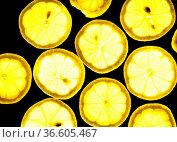 Zitrone, zitronen, zitronenscheibe, scheiben, durchlicht, obst, frucht... Стоковое фото, фотограф Zoonar.com/Volker Rauch / easy Fotostock / Фотобанк Лори