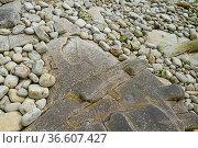 Steine, Küste, Bretagne, kiesel, natur, meeresküste, geologie, gestein... Стоковое фото, фотограф Zoonar.com/Volker Rauch / easy Fotostock / Фотобанк Лори