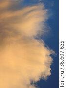 Gewitterwolke,wolke, wolken, gewitter, gewitterwolken, wetter, wetterkunde... Стоковое фото, фотограф Zoonar.com/Volker Rauch / easy Fotostock / Фотобанк Лори