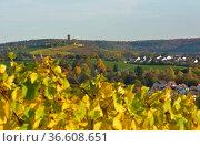 BW. Kürnbach Weinberg - Weg, Kirche im Dorf, Kraichgau, Стоковое фото, фотограф Zoonar.com/Bildagentur Geduldig / easy Fotostock / Фотобанк Лори