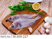 Uncooked flatfish fish with parsley and garlic. Стоковое фото, фотограф Яков Филимонов / Фотобанк Лори
