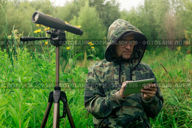 Ornitologist looks at or writes down information on the tablet while standing among the tall grass in the wetland