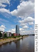 Frankfurt, main,ezb, europäische zentralbank, mainufer, skyline, stadt... Стоковое фото, фотограф Zoonar.com/Volker Rauch / easy Fotostock / Фотобанк Лори