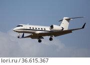 Light private jet comes in for a landing. Стоковое фото, фотограф Яков Филимонов / Фотобанк Лори