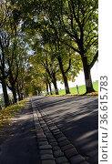 Schraegansicht einer kleinen Landstrasse. Стоковое фото, фотограф Zoonar.com/Karl Heinz Spremberg / easy Fotostock / Фотобанк Лори