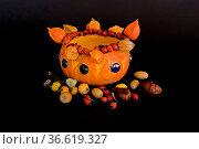 Eine stilvolle Kürbisleuchte als Tischdekoration gedacht. Стоковое фото, фотограф Zoonar.com/Christa Eder / age Fotostock / Фотобанк Лори