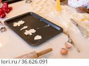 Freshly prepared homemade cookies lying on tray ready for bake. Стоковое фото, агентство Wavebreak Media / Фотобанк Лори